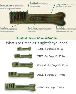 greeniessizinginfographic